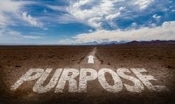 Image with the word purpose and a forward arrow into the horizon
